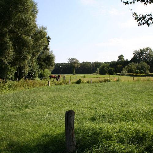 Landschap Volthe
